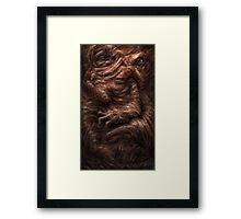 Face of the Beast Framed Print