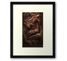 Face of the Beast Framed Print