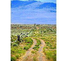 Or....We Can Take The Old Road..Brother's Oregon Photographic Print
