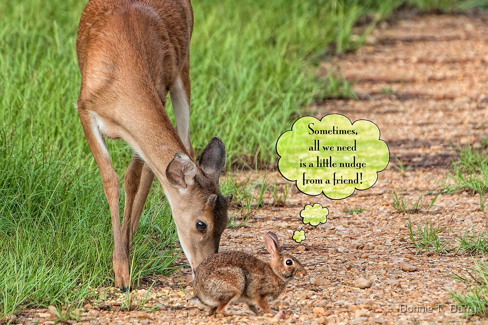 Sometimes, all we need is a little nudge from a friend! by Bonnie T.  Barry