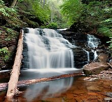 Mohican Summer Reflection by Gene Walls