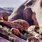 Rocks Around The Rock by George Petrovsky