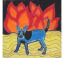 Flame Dog Photographic Print