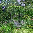 Lost In The Garden Green by Jane Neill-Hancock