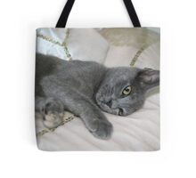 Grey Kitten Relaxed On A Bed Tote Bag