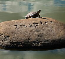 Inspire - Turtle Sunning Itself by W. Lotus