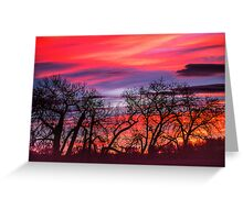 Cottonwood Morning Sawhill Tango Greeting Card