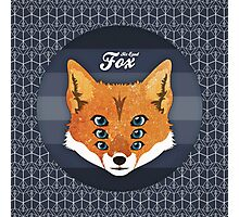 Six Eyed Fox Photographic Print