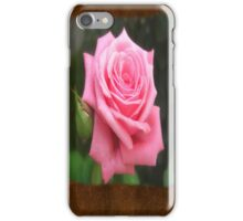 Pink Roses in Anzures 4 Blank P3F0 iPhone Case/Skin