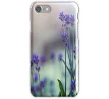 lavender blooming  iPhone Case/Skin