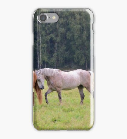 Playful Horses iPhone Case/Skin