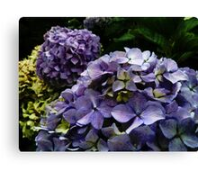 Mauve and Yellow Canvas Print