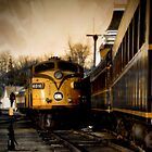 North Conway Train by Tania Palermo