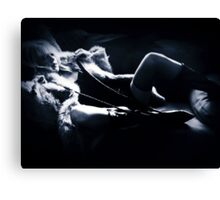 Venus In Furs Canvas Print