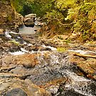 Downstream at Bangalore by peasticks