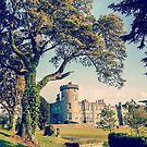 Dromoland castle hotel county clare ireland by Noel Moore Up The Banner Photography