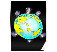 Turtle Shell World Map Poster
