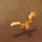 « Leaf on the Wind » par Glenn Martin
