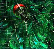 Black Widow by orangebox