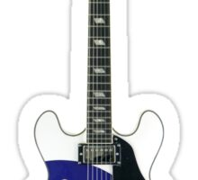 Aria Mod Target Electric Guitar Sticker