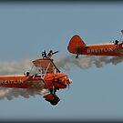 Breitling Wingwalkers by ChelseaBlue