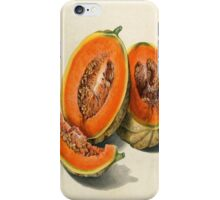 Vintage Vector Style Thanksgiving Pumpkin Slices iPhone Case/Skin