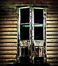 The door by John Medbury (LAZY J Studios)