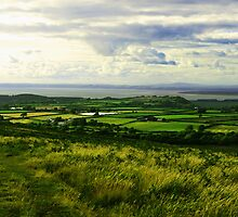 Gower Views, Swansea Wales by Elinor Barnes