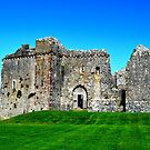 Weobley Castle, Gower, Wales by Prettyinpinks