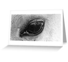 Eye of the wise Greeting Card