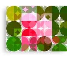 Pink Roses in Anzures 4 Abstract Circles 3 Canvas Print