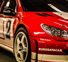 Team Peugeot 206 Rally Car by Mike Kay