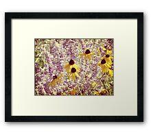 Black Eyed Susans & Lilacs Framed Print