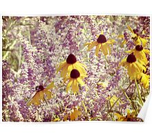 Black Eyed Susans & Lilacs Poster