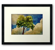 Pause For Thought 2 Framed Print