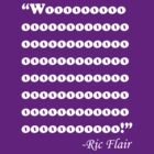 wooo ric flair by toxtethavenger