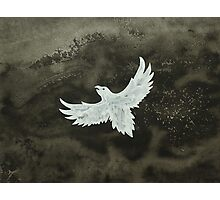 White Crow original painting Photographic Print