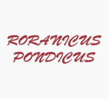 Roranicus Pondicus One Piece - Short Sleeve