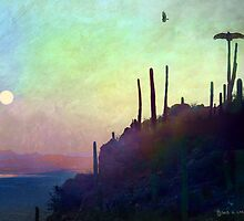 desert view at twilight, buzzard roost by R Christopher  Vest