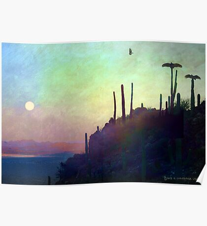 desert view at twilight, buzzard roost Poster