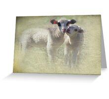 Lamb Twins Greeting Card