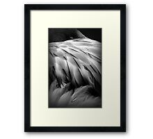 Flamingos Dream in Black and White Framed Print