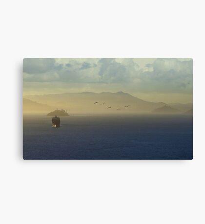The San Francisco Bay Canvas Print