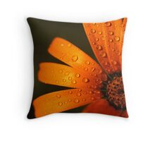 There's something about Daisy... Throw Pillow
