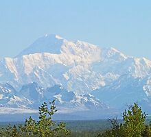 Mt McKinley, Alaska by Graeme  Hyde