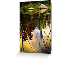Clouds Reflecting Off of Plant Oils in the Swamp Greeting Card