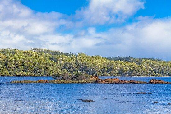 Approaching Sarah Island, Tasmania, Australia by Elaine Teague