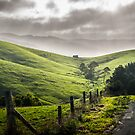 Apollo Bay Valley by Ruben D. Mascaro