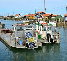 La Tremblade, site ostriecole,  Oyster farming harbour, Charente Maritime, France by 7horses