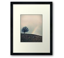 Chasing rainbows and counting sheep. Same thing really. Framed Print